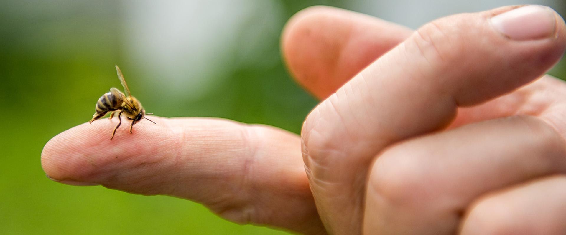 Remegés a testben, magas vérnyomás esetén A magas vérnyomás tünetei - Jellemző panaszok